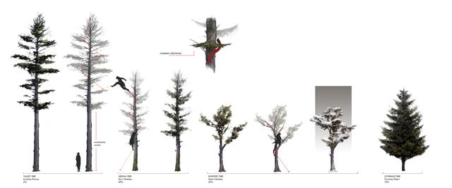 AC3_PR_Frontier_Tree Variation_1_WWu_small